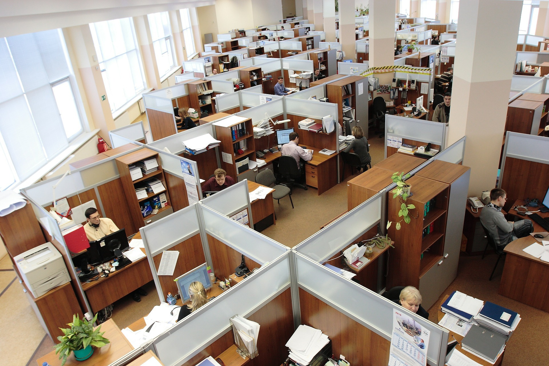 Office full of people and cubicles